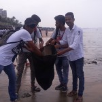 Versova-Beach-Cleanliness-7