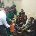 Tree Plantation Program (1)