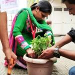 Tree Plantation Program (13)