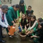 Tree Plantation Program (2)