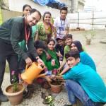 Tree Plantation Program (8)