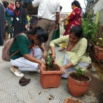 Tree Plantation Program by Degree College 2019 (4)
