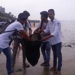 Versova-Beach-Cleanliness-7