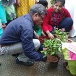 Tree Plantation Program 2018. (1)