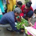 Tree Plantation Program 2018. (6)